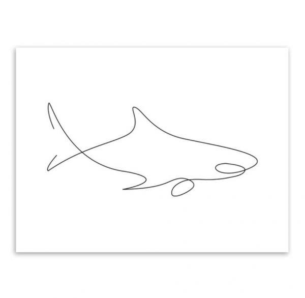 shark poster picasso