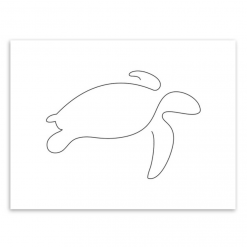 turtle poster picasso