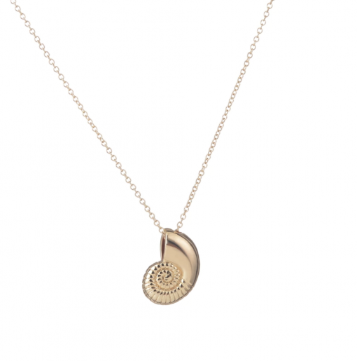 gold nautilus necklace