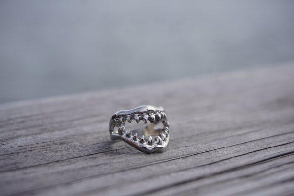 eco friendly shark ring gift