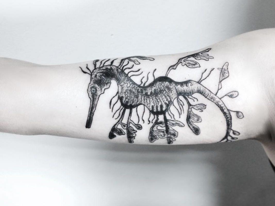 tattoo sea horse black and white