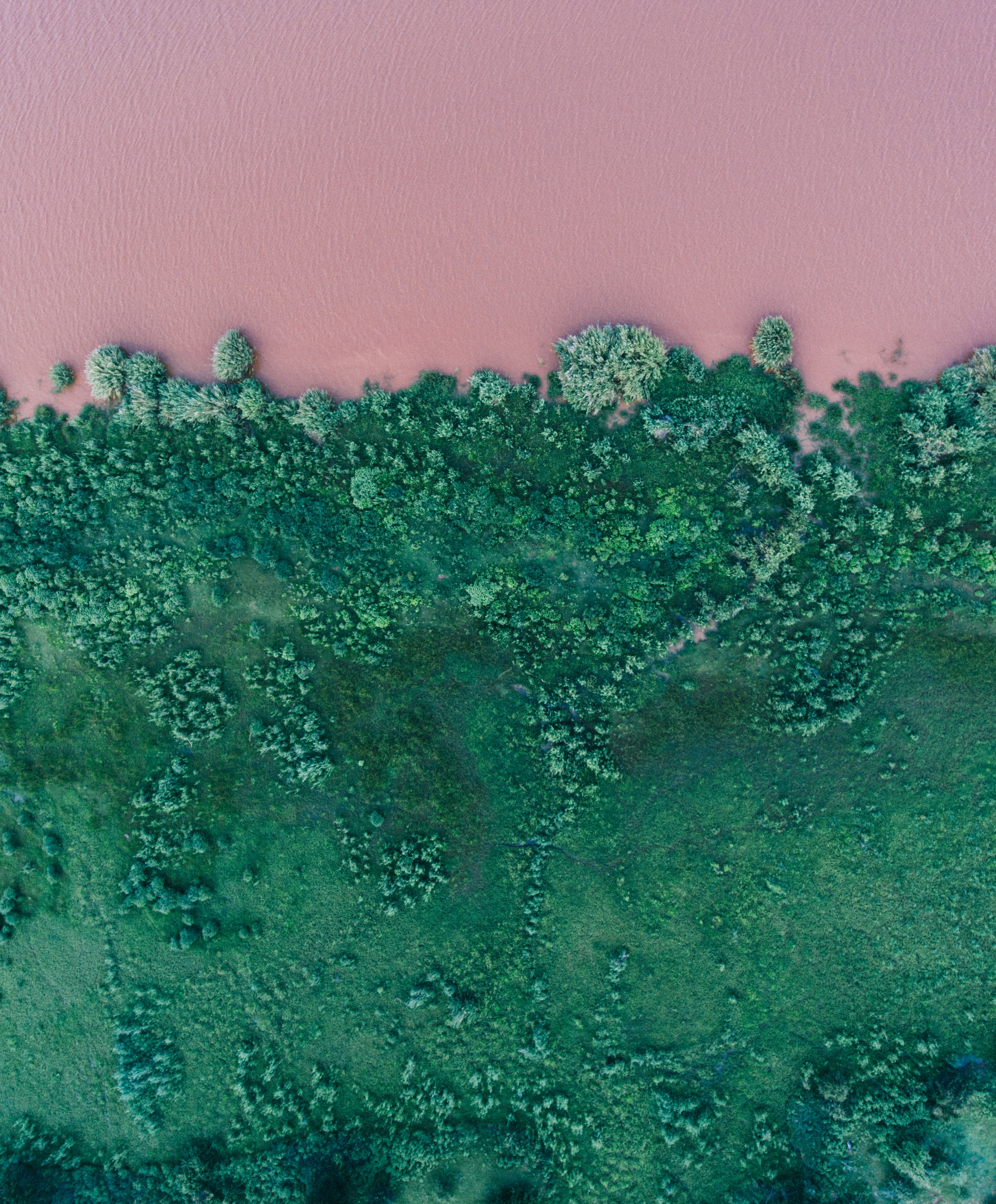 pink lake from above