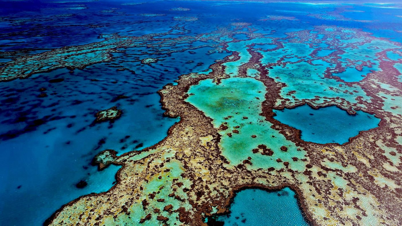 great barreer reef from above