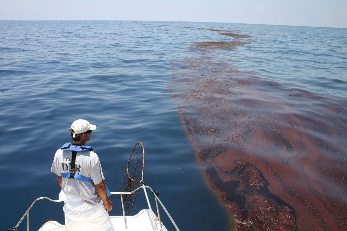 oil in ocean