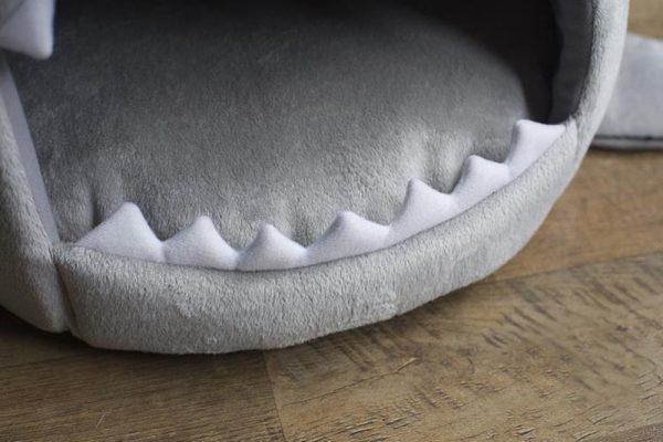 cat bed shark