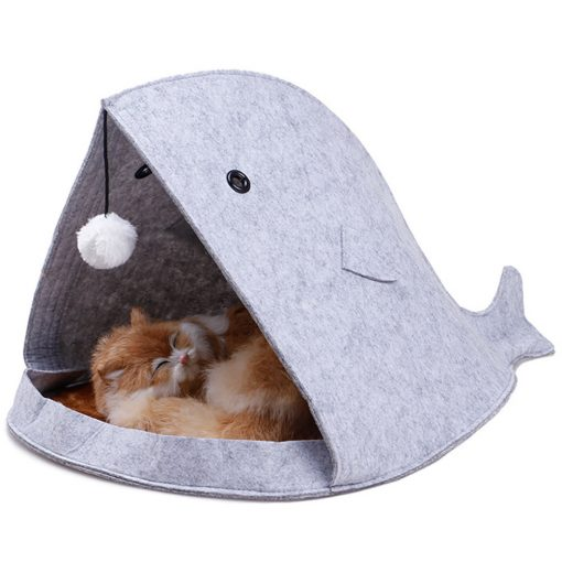 whale cat house