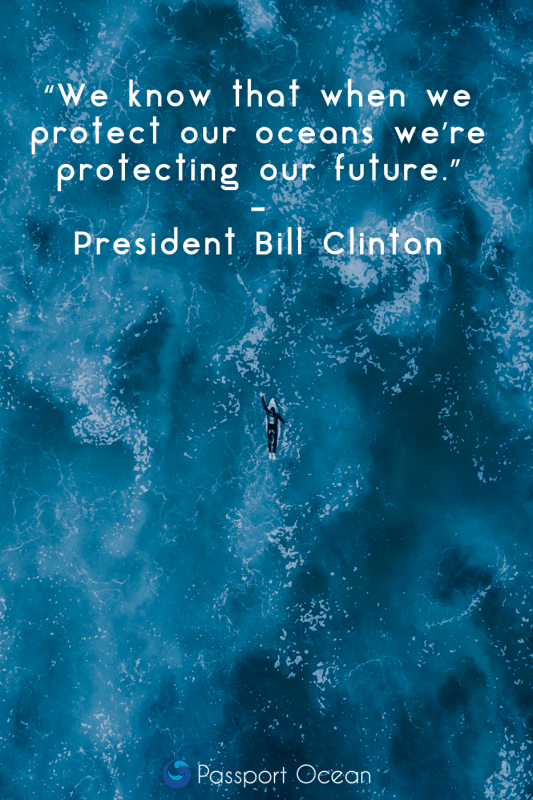 Save The Ocean quote