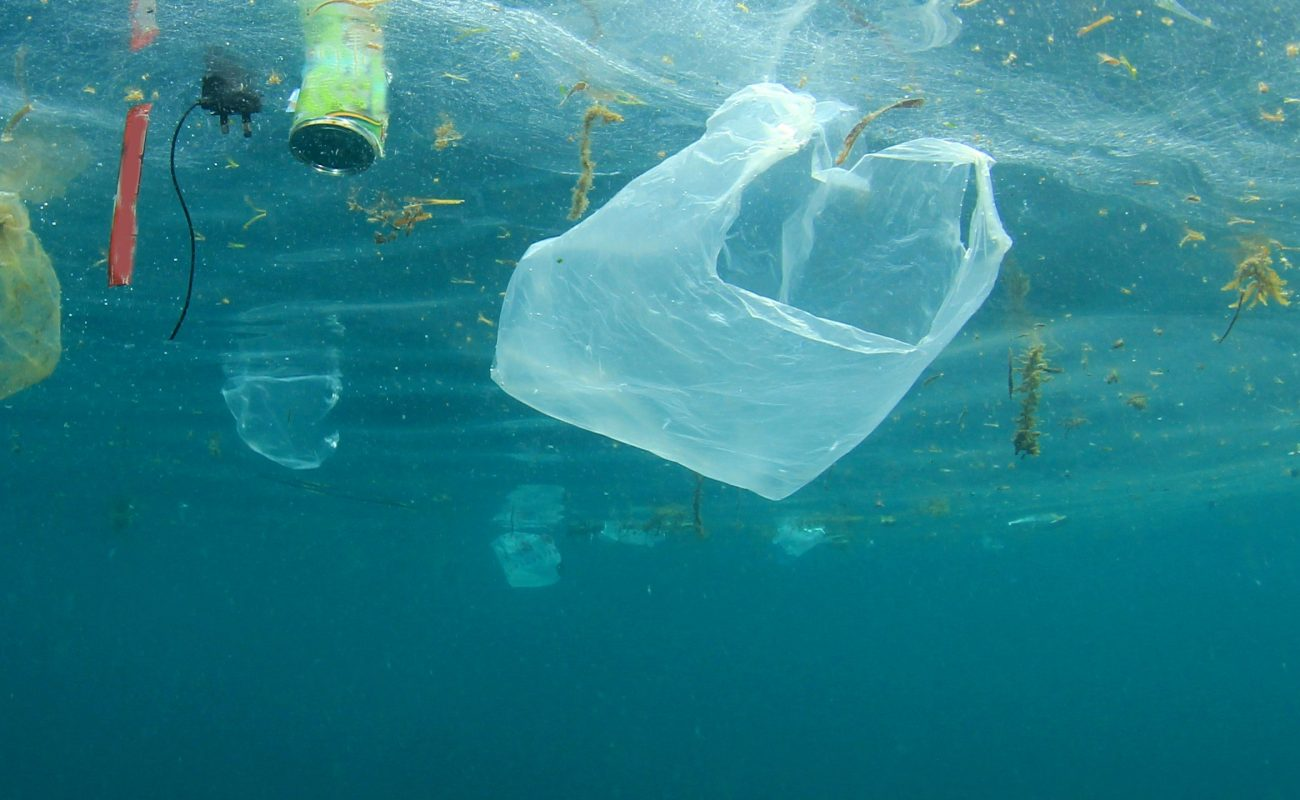 Shocking Facts about Plastic bags in the Ocean